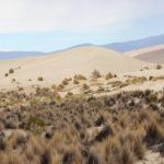 Dunes of Tajzara