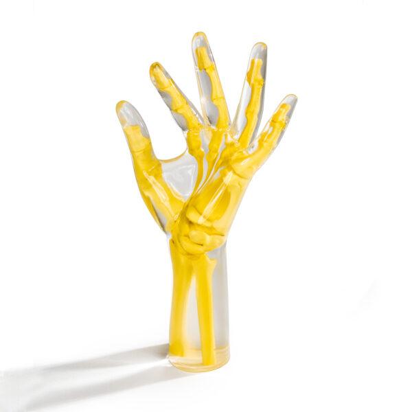 Hand & Wrist Phantom