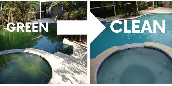 Pool Cleanup