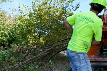 Storm Damage Clean Up