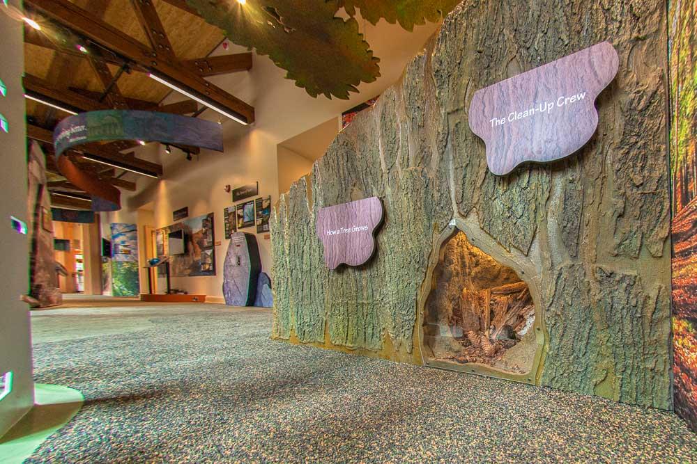 letchworth state park nature center exhibits