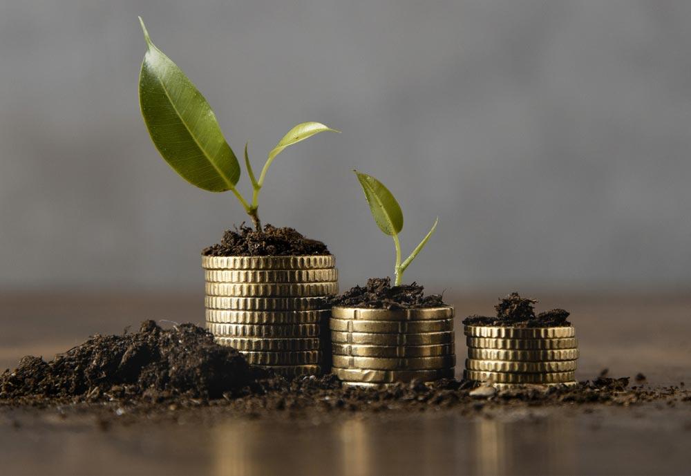 Dépense ou investissement?