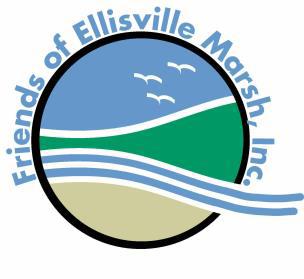 Friends of Ellisville Marsh