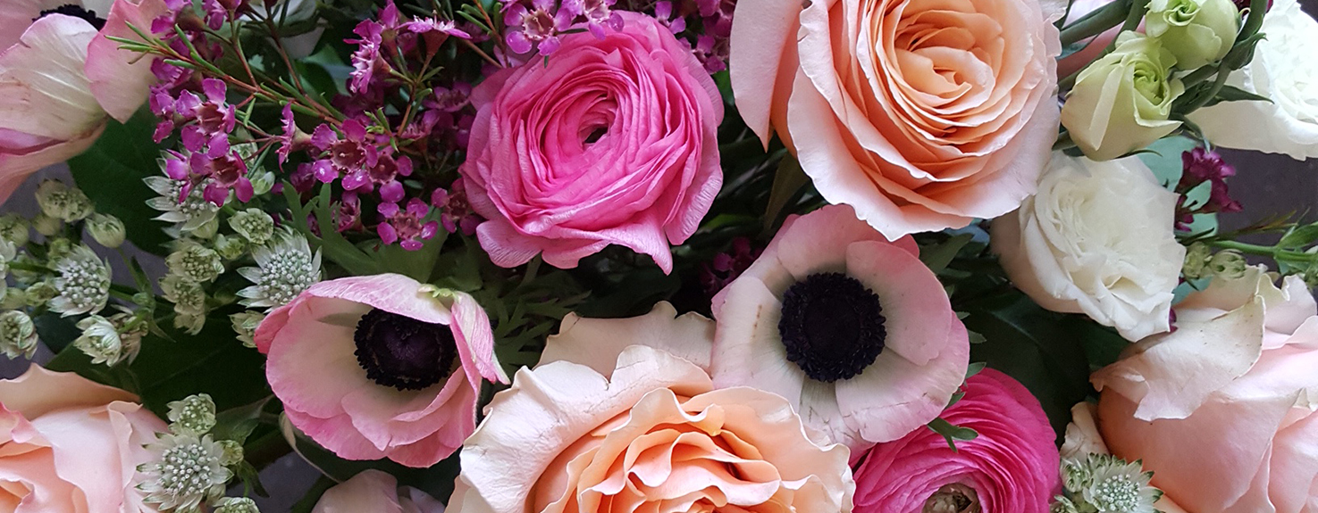 Flowers and all things beautiful!