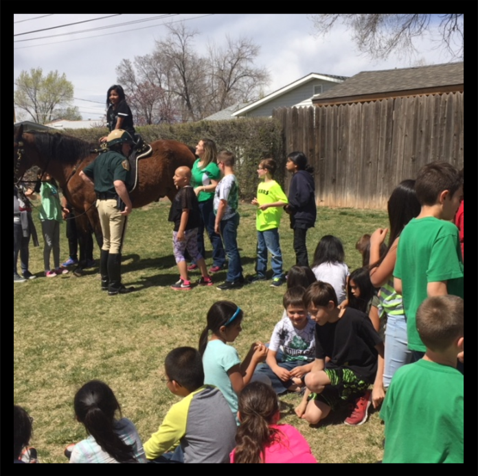 Kemper School 3rd grade class meeting Deputy Ted Holland and Comanche his Mounted Patrol horse.