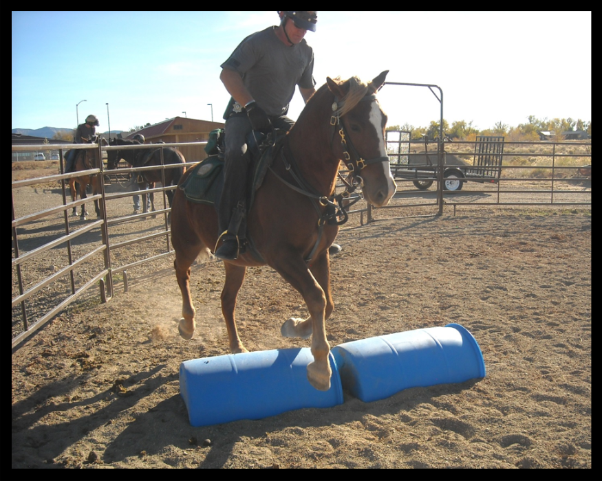 Success with jumping over the barrels