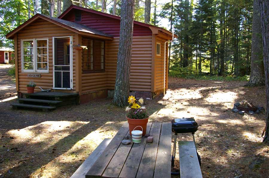 Scotch Pine Rental Cabin