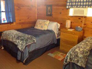 scotch-pine-beds1