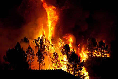 bushfire by Bruno Ismael Silva Alves shutterstock_112221542