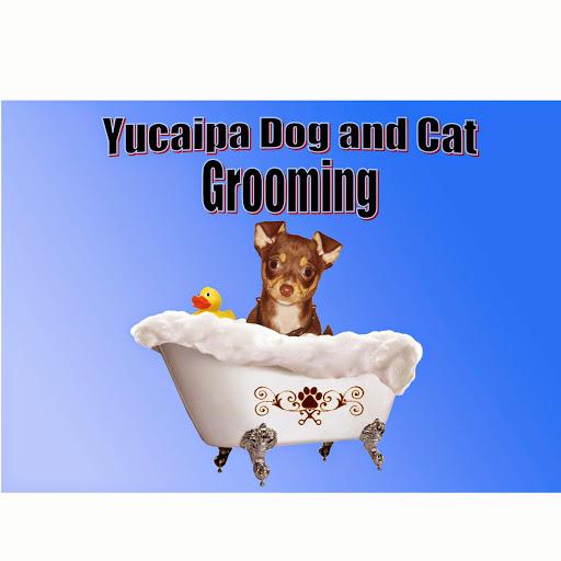YucaipaDogAndCatGrooming