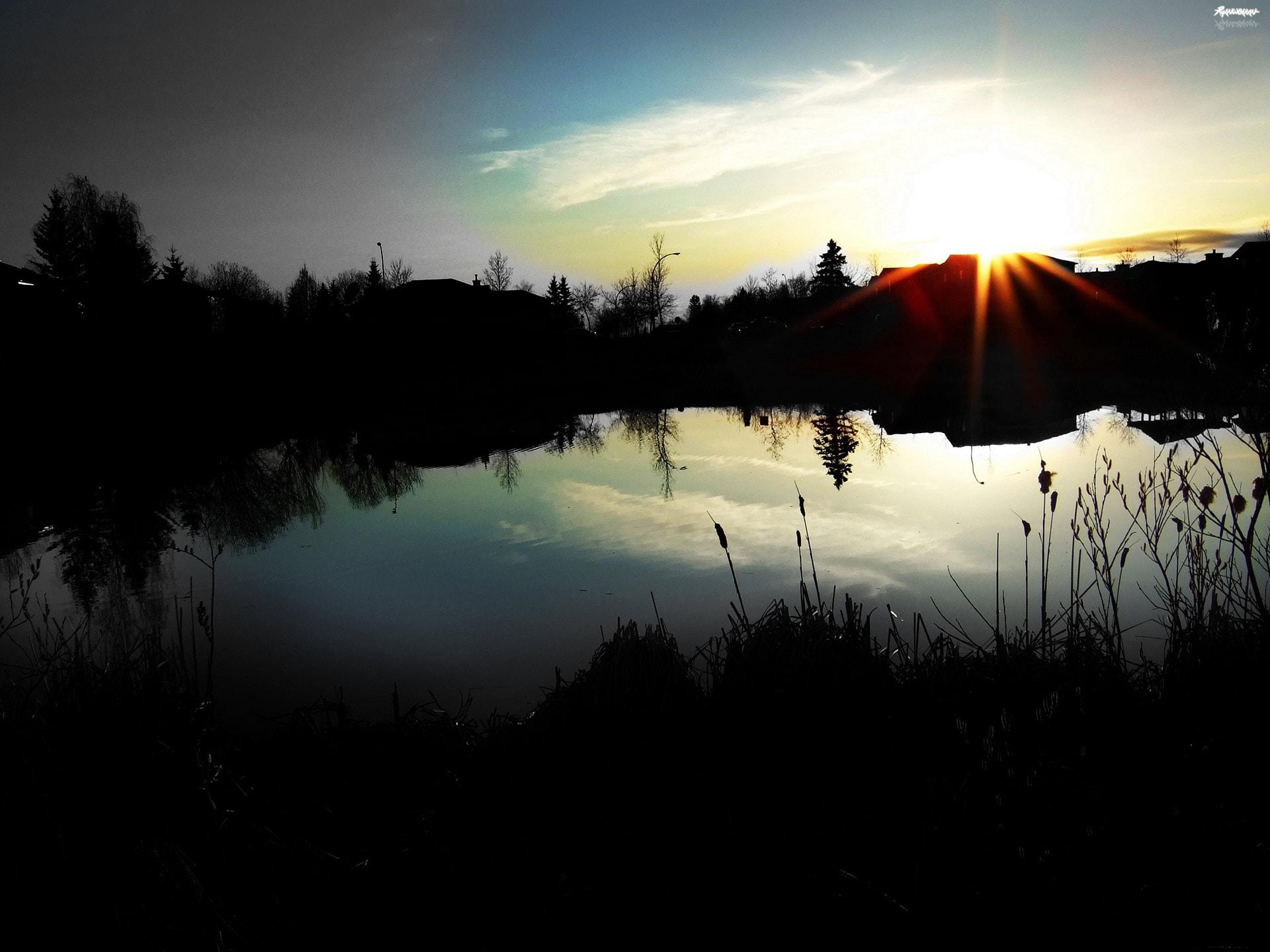 sta-pond-1