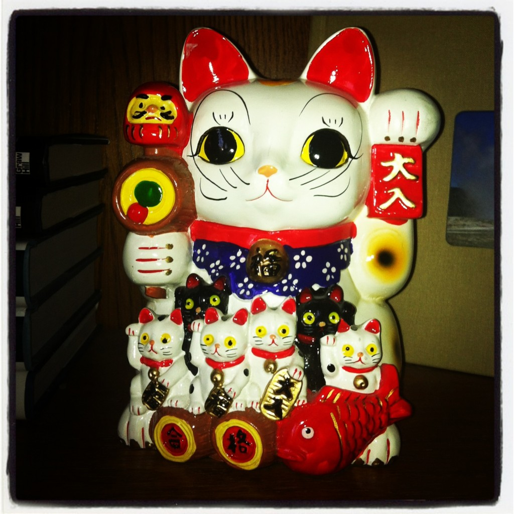 My not-so-lucky cat