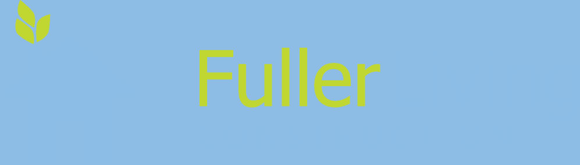 Fuller Living Construction