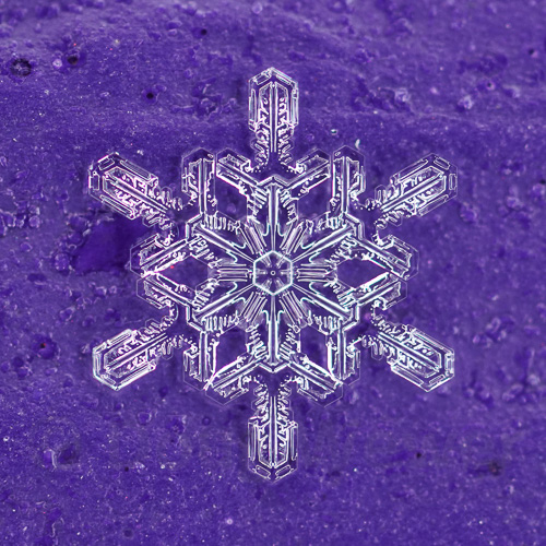 Snowflake 118