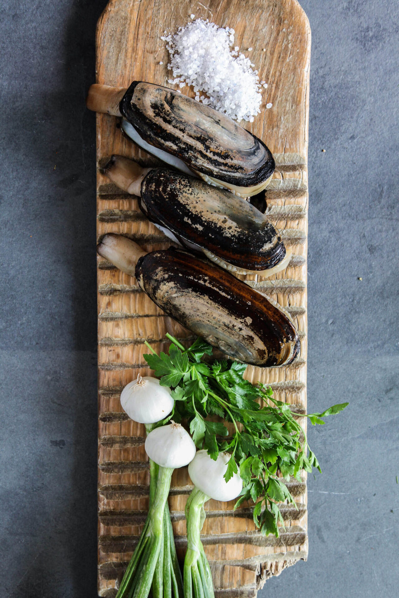 wildfood4