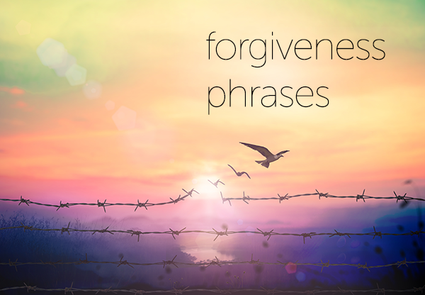 forgiveness phrases