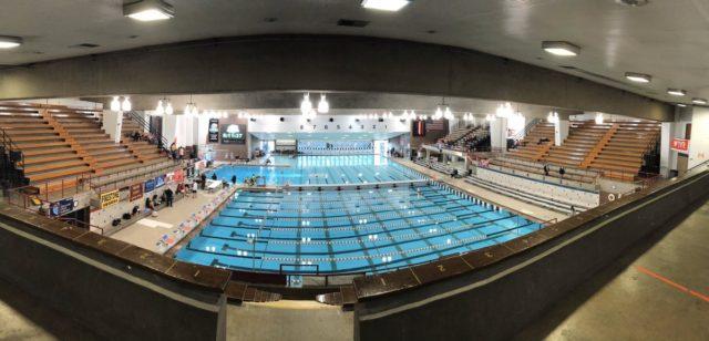 swim-dive-2