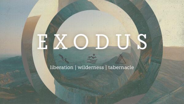 Exodus | Liberation, Wilderness, Tabernacle