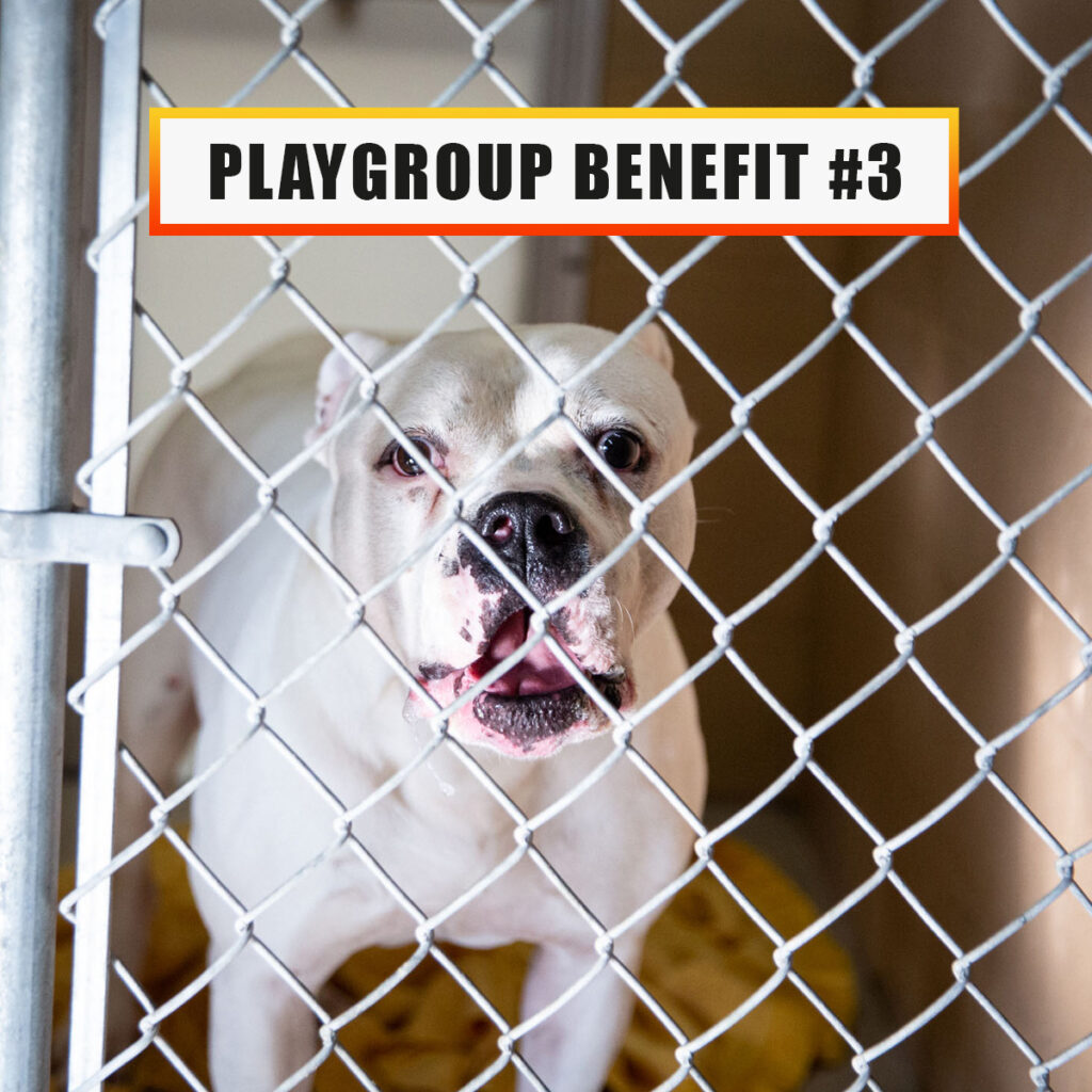 Playgroup benefit 3