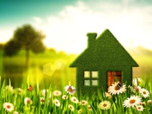 Read more about the article Eco-Friendly Roofing