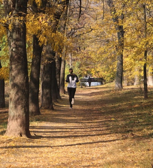 4 Ways to Stay Active This Fall