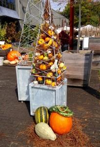 Autumn Outdoor Inspiration