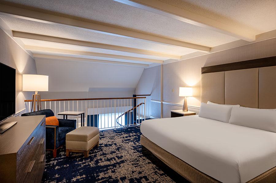 albdh-cp-desmond-albany-duplex-suite-room-view-3