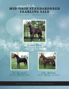 Alvin Schlabach Mid Ohio Standardbred Yearling Sale Consignments