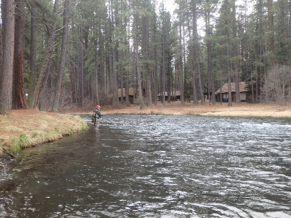 Fishing the Metolius River in Central Oregon.