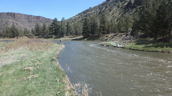 The Crooked River at 350 CFS.
