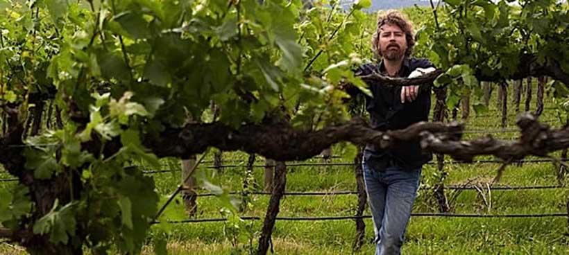 The Winemaking Team