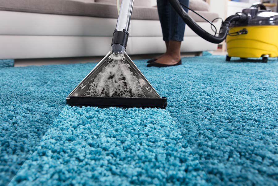 Carpet Cleaning and Area Rug Cleaning Services