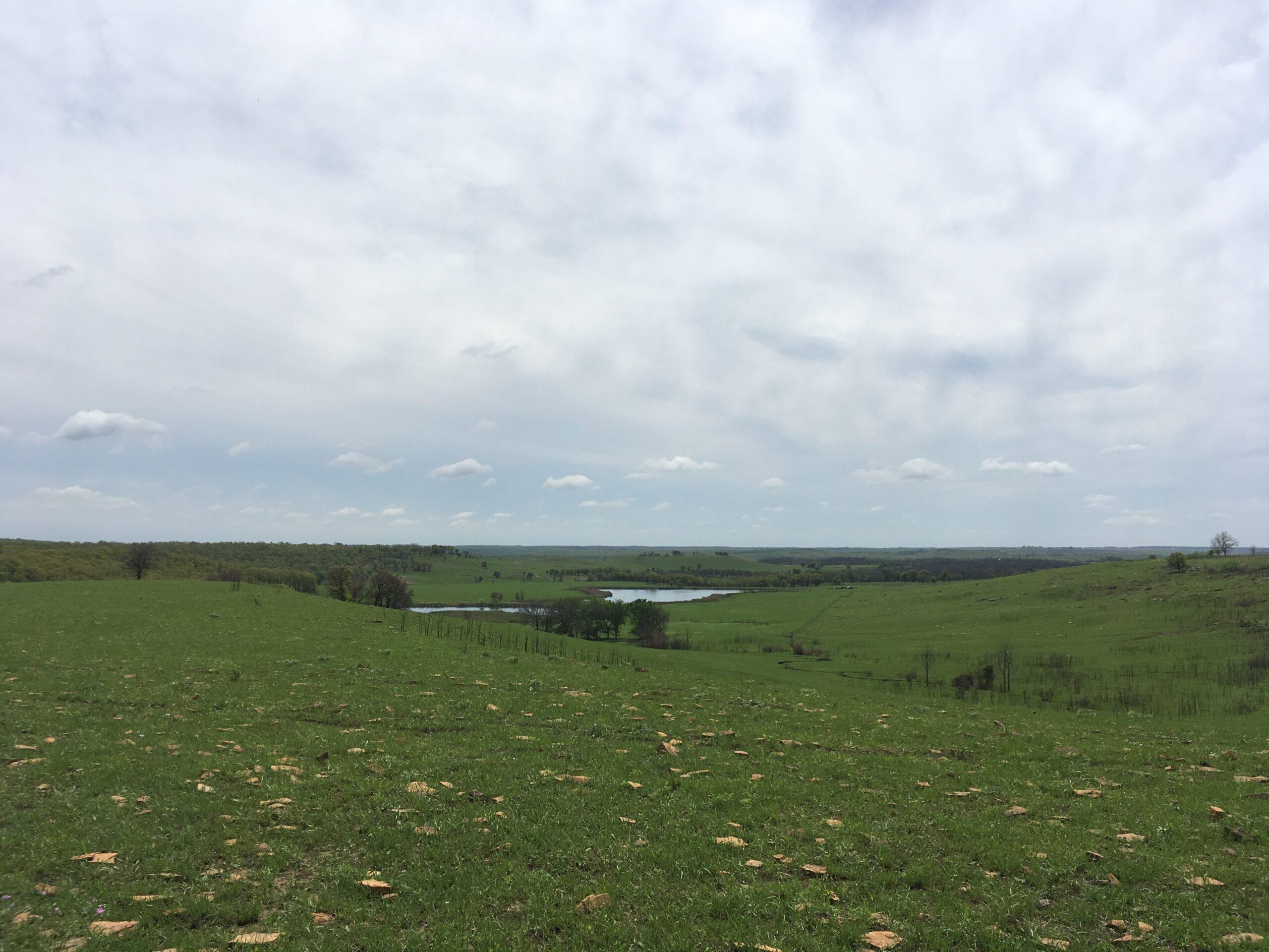 Ranch, Ranches