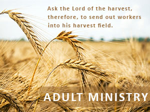 Adult ministries with scripture