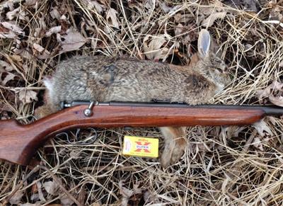 My Favorite Single Shot 22 Rifle