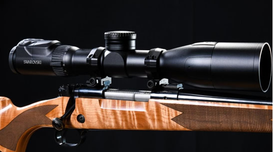 Warne 40mm Mountain Tech Rings on Rifle