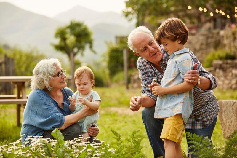 Grand Parents right grandchildren