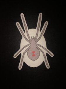 Black Widow Spider Designed precut adhesive patch to secure all diabetic devices