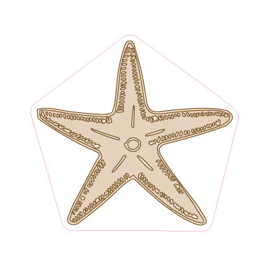 Starfish Designed precut adhesive patch to secure all diabetic devices