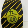 175th Anniversary Tie