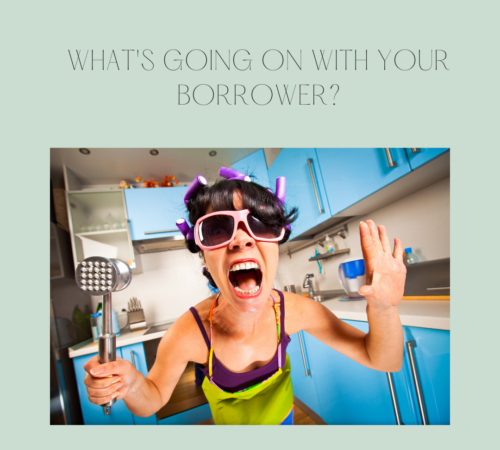 What's going on with your borrower?