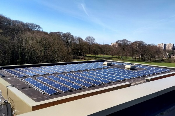 an-array-of-solar-panels-on-a-flat-roof