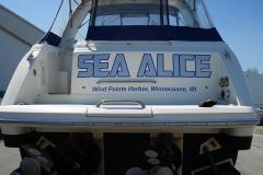 Sea Alice