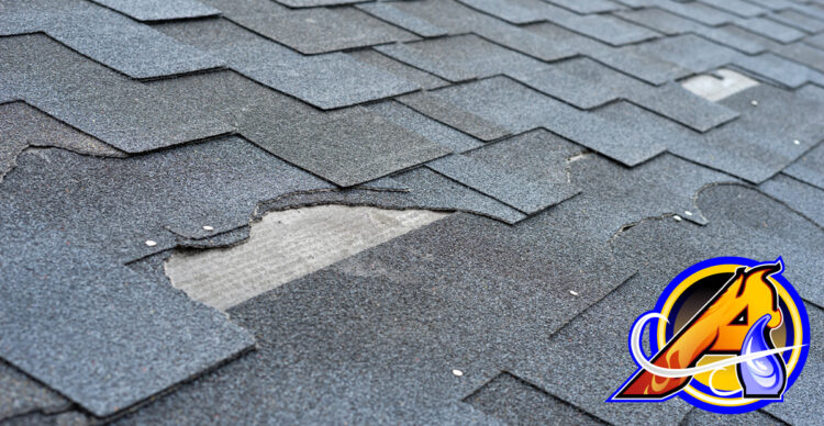 The Case for Roof Repair
