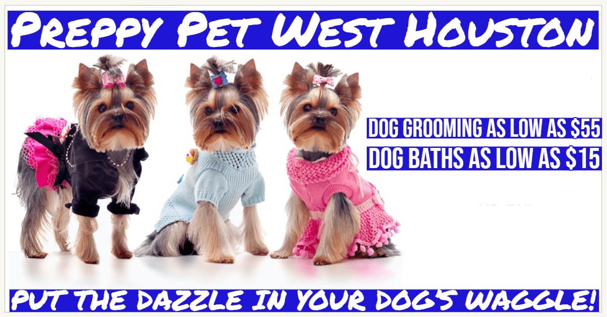Dog Grooming Prices Houston, TX | Preppy Pet West Houston