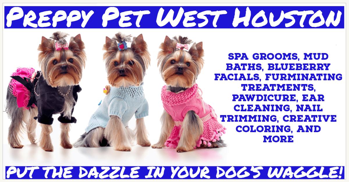 Dog Grooming in Houston, TX   Preppy Pet West Houston