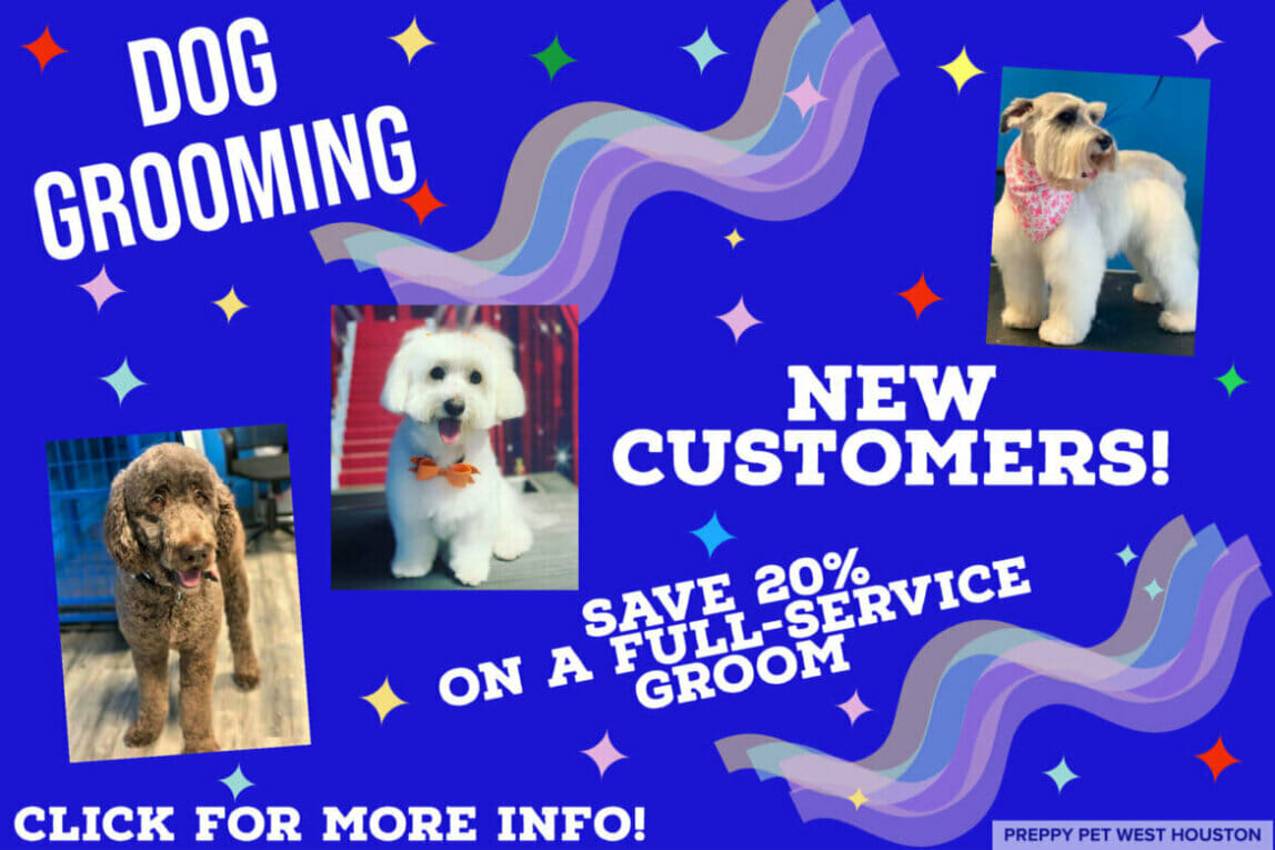 Preppy Pet West Houston | Dog Grooming Services