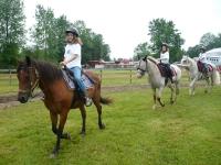Riding Saddle