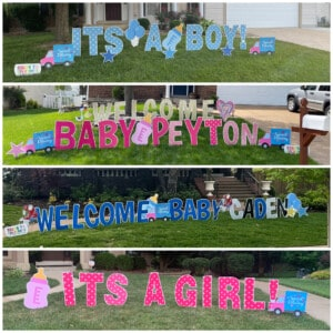 Signs to Celebrate Baby signs