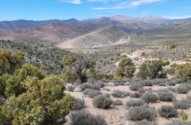 Lovell Canyon Nevada